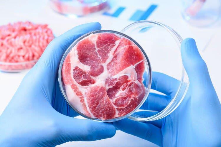 گوشت مصنوعی گوشت آزمایشگاهی